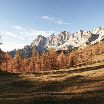 Vielfältige Natur in der Steiermark