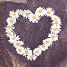 Sommerstart & Muttertag: Unsere Highlights im Frühling