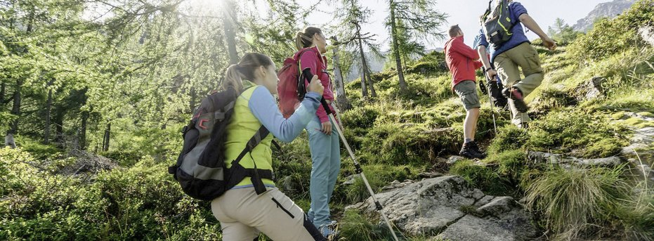 Wellness und Wandern