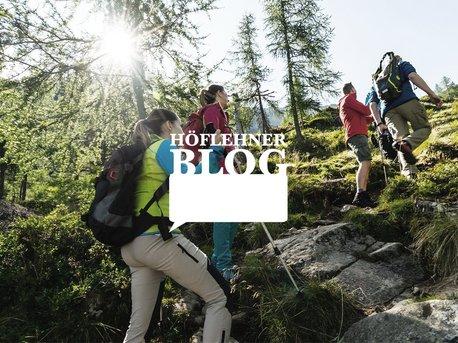 Höflehner Blog