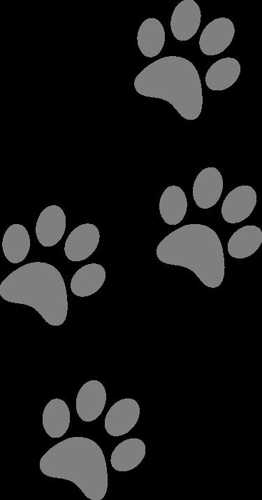 footprints-309158