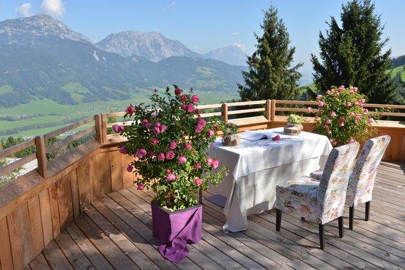 Heiraten auf der Yogahaus-Terrasse