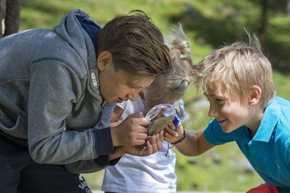 Kinder erforschen Natur