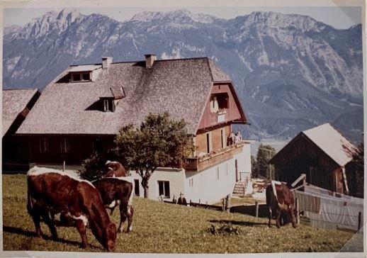 Knapplhof