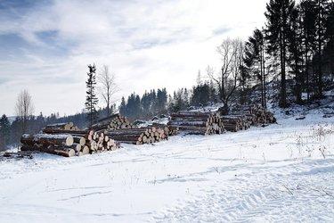 wood-4679170_1920