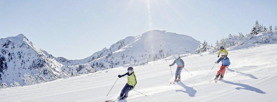 Skiing in the winter wonderland