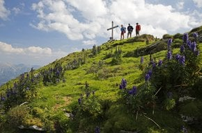 Wellness & hiking - feel the power of nature