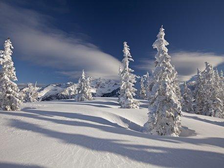 Ski & Wellness 5=4 Midweek Special
