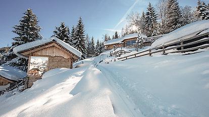 Sixty Plus Winterpauschale Höflehner