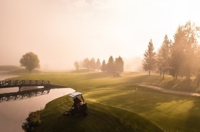 Golfing partnership information